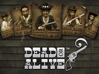 Игровой автомат Dead Or Alive